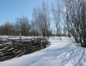 p zima 1